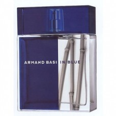 Armand Basi in Blue Tester 100 ml